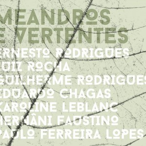 "Free Music Septep ""Meandros e Vertentes"" CD"